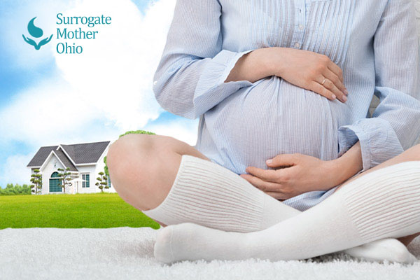 surrogate mothers Why become a gestational surrogate those who become a surrogate mother (also known as a gestational carrier) provide a gift of unparalleled compassion for couples and individuals experiencing infertility or who are lgbt.